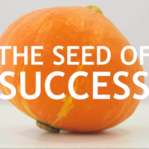 SHORT-FILM: The Seed of Success