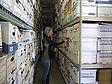 Oragnizing boxes for record management, retention, and destruction