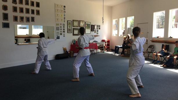 Fighting Form 1