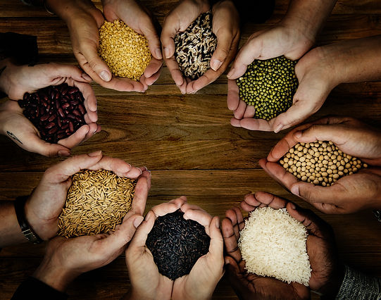 Group of hands holding healthy food agri