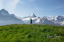 Schreckhorn, Jungfrau region