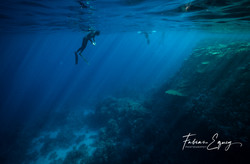 Freediver: Axel. Rasmuhammed, Egypt.