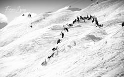 Rider: Arnaud. Verbier, Switzerland