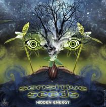 Sensitive Seeds, Hidden Energy - Bernard Sour
