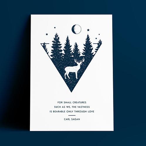 Carl Sagan Quote, Space print, Pale Blue Dot, Space Gift, Carl Sagan Poster, Carl Sagan Print, For Small Creatures