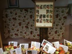 Apfelsortenausstellung