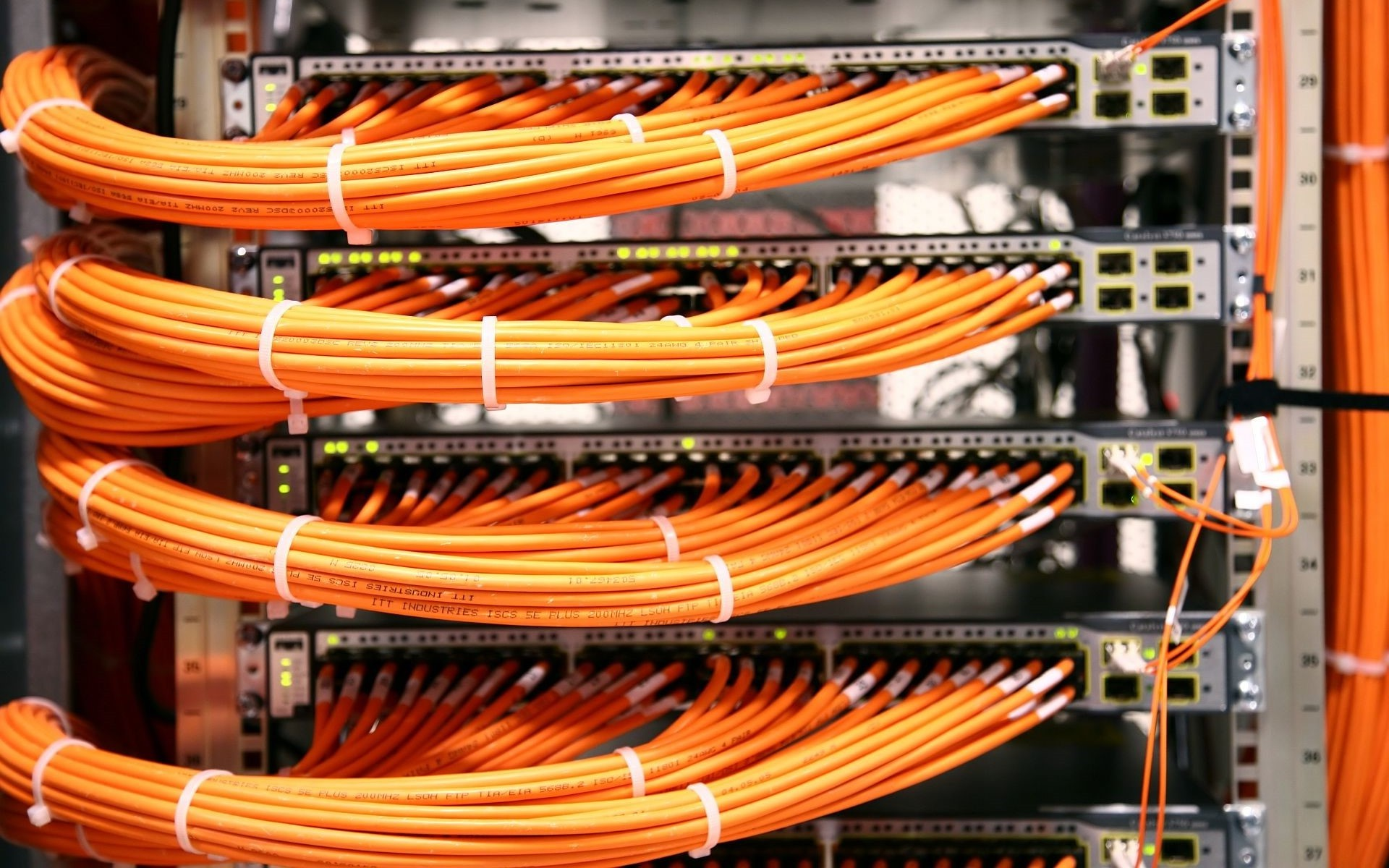 7036117-server-ethernet-cables