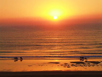 Randonnée équestre | Maroc | Amazir Cheval | Essaouira | Sidi Kaouki | Agadir | Souss | chevaux | équitation | promenade | excursion | balade