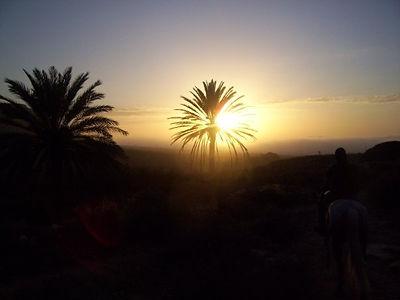 Essaouira sidi kaouki agadir Amazr Cheval randonnée rando excursion équitation transfert repas logement