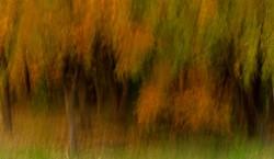 Autumn Breath No. 2