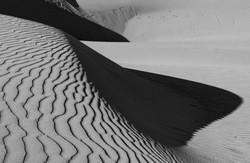 Dunes' Edge #7