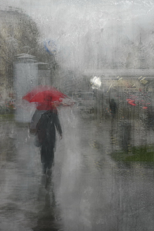 Rainy Elegancy