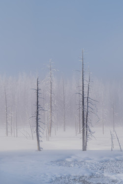 Yellowstone in February