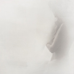 Fog of Dawn