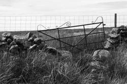 Three Fences