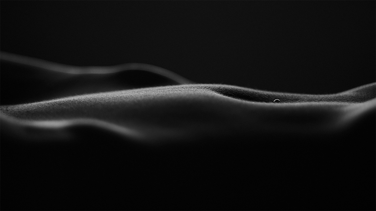 Nude Detail No. 1