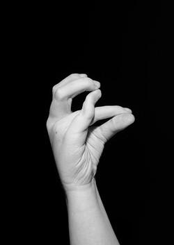 Study of Hands No. 1