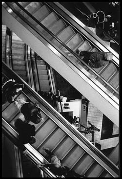 Homage A Escher