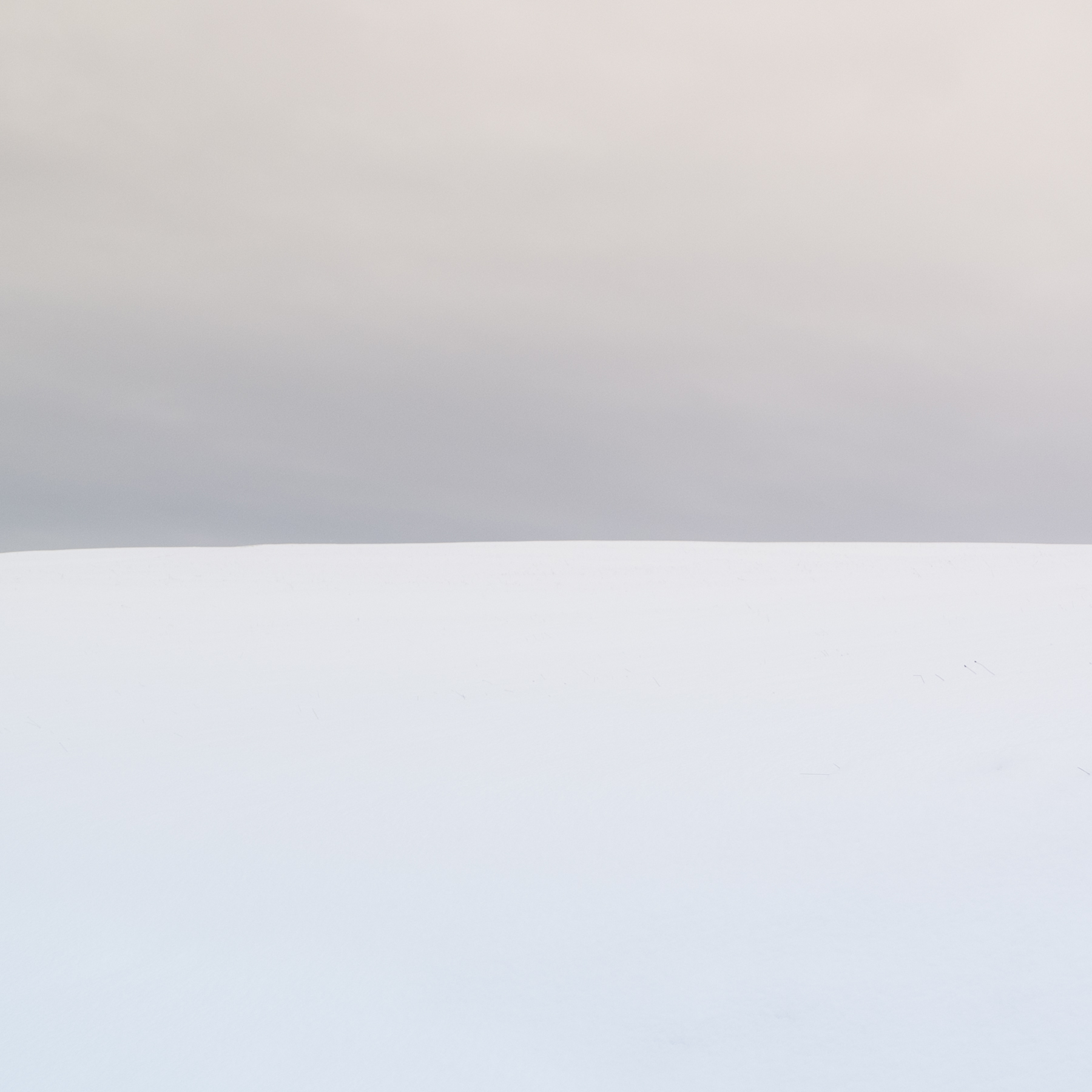 Schwarzwald Snowscape 2