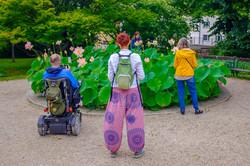 Bloomers, Vienna 2020