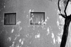 The Fingerprints of Light 2019 Tokyo