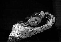 Flamenco #1