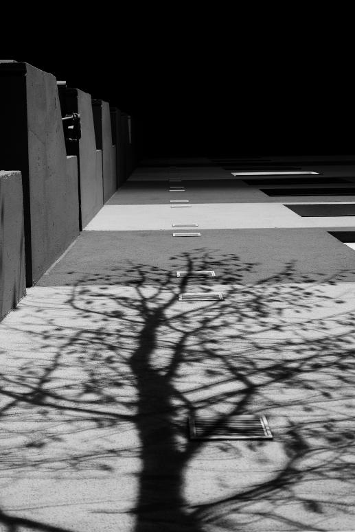 Drop Shadow No. 1