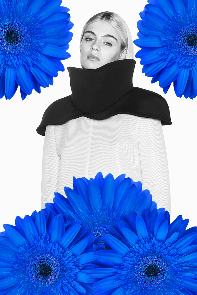 Blue Fashion Flower