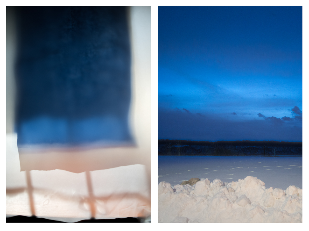 Summer & Winter, diptych
