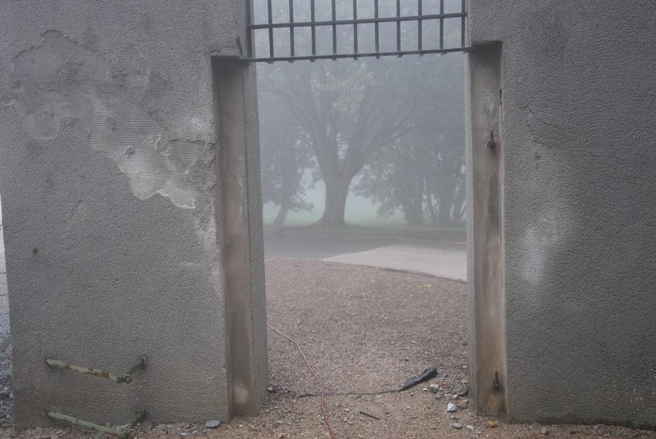 Buchenwald, 2009