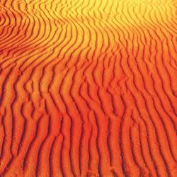 A sand dune of Australian Red Centre