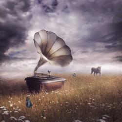 Nature's Tune