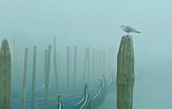 Where is Venice?