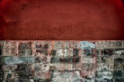 Ancient Chinese Walls: Forbidden City 1, Beijing