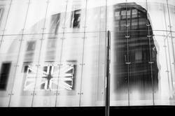 Flagmammuth / Zászlómamut