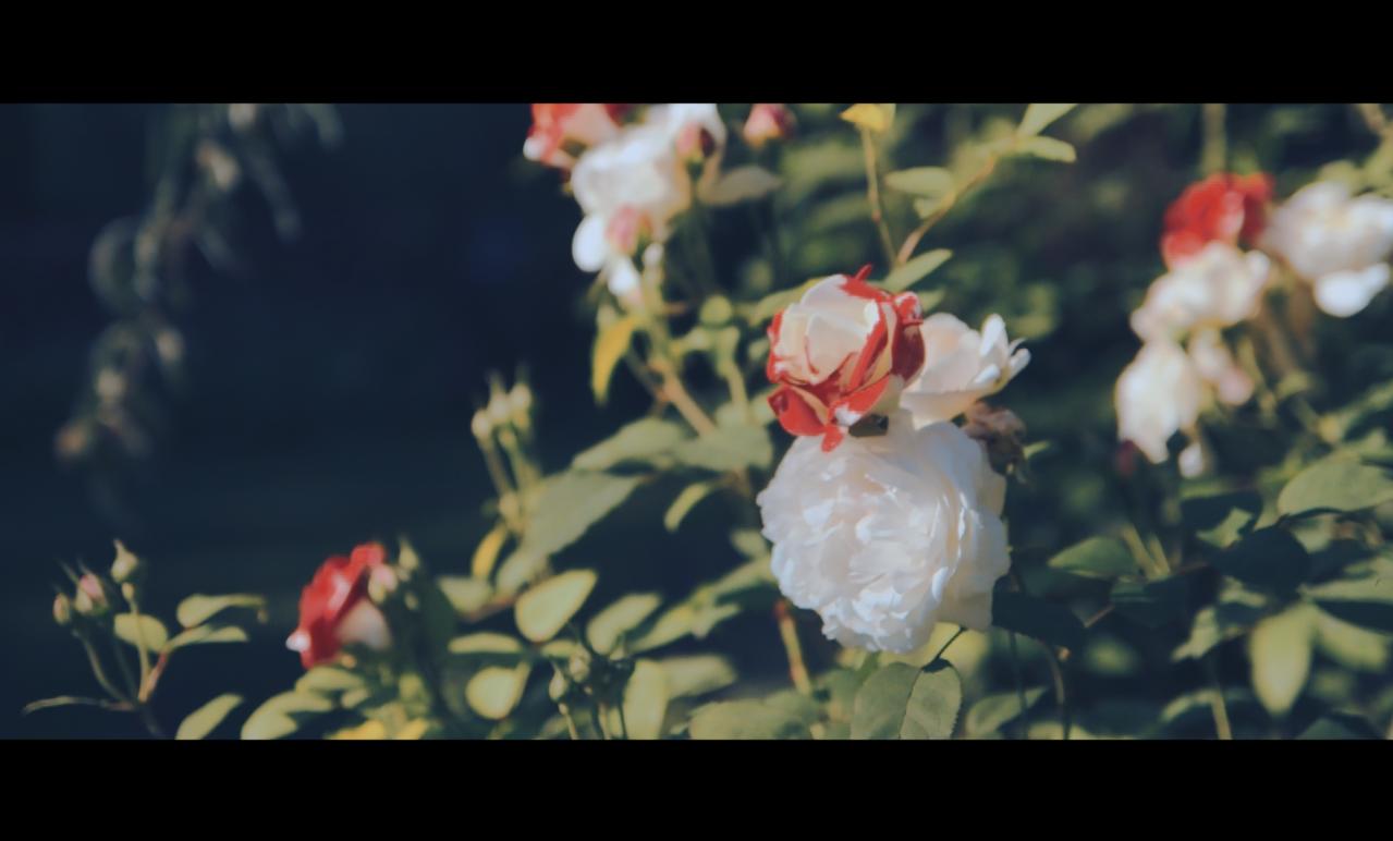 Screen Shot 2015-10-22 at 15.32.17