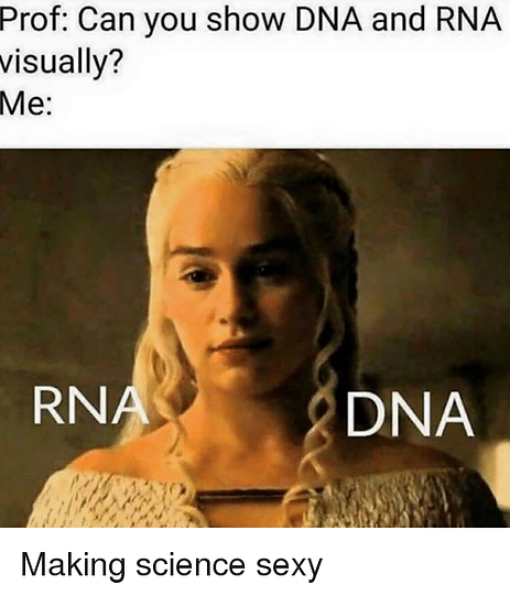 prof-can-you-show-dna-and-rna-visually-m