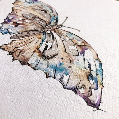 Watercolor-Butterfly-Artist-Print-nature