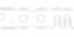 logo-zoom.png