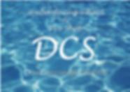 DCS2_コピー.png