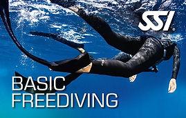 Basic Freediving.jpg