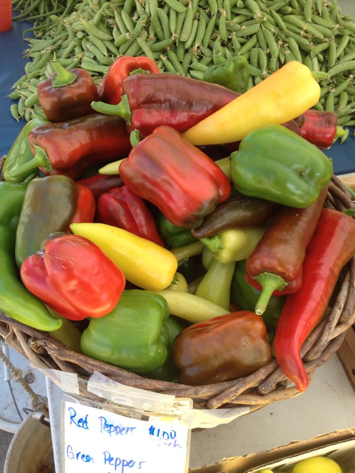 Bounty of fresh peppers