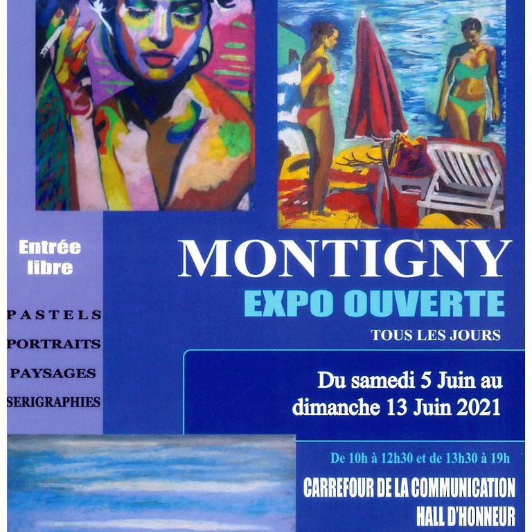 Exposition Joël MONTIGNY