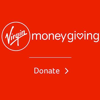 virgin donate insta.jpg