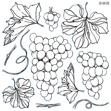 Raisins/ 'Grapes', IOD stamp