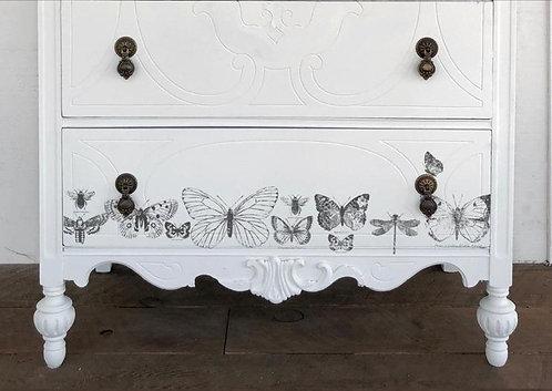 'Butterflies' 'Papillons'