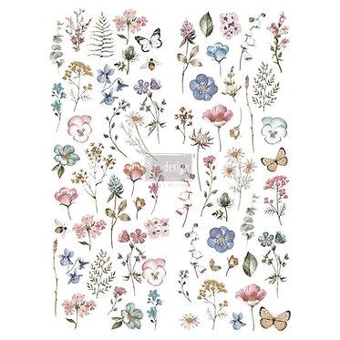 Delicate fleurs, transfert redesign