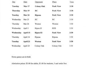 Park View Boys' Volleyball Schedule 2020