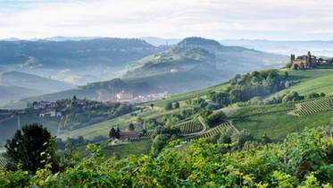 Barolo and Barolo vineyards 2 copia.jpg