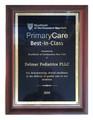 Delmar Pediatrics PLLC recognized by BlueShield of Northeastern New York